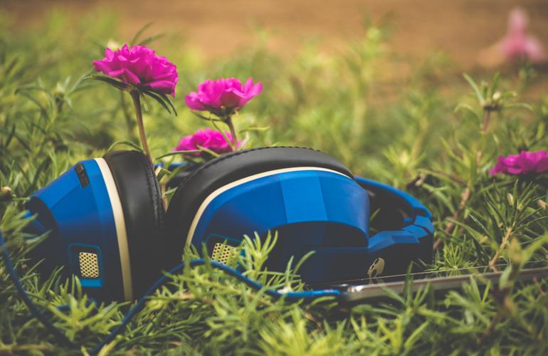 headphones on grass (c) Sai Kiran Anagani
