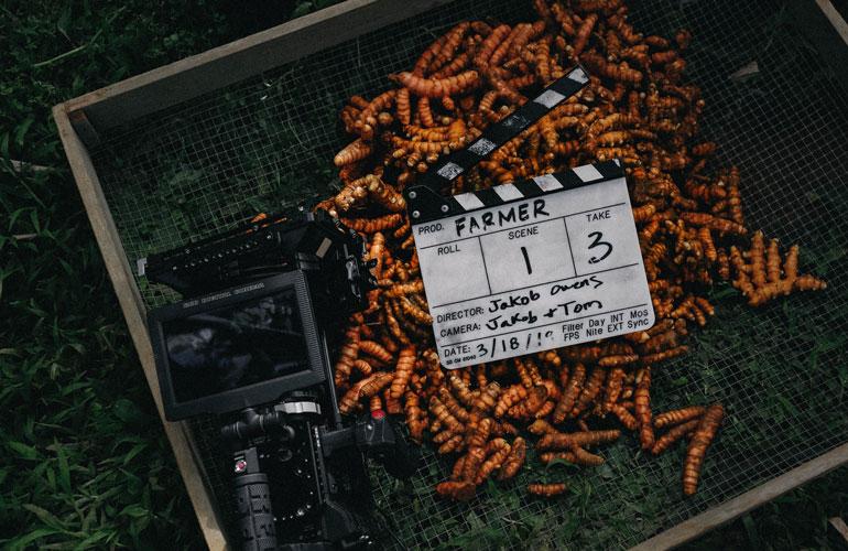 tumeric root harvest with camera (c) Jakob Owens