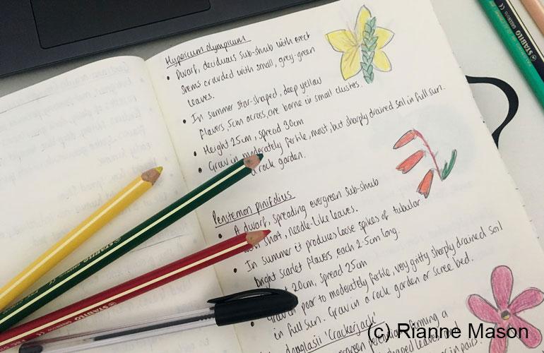 Study notes (c) Rianne Mason
