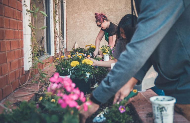 People gardening (c) NeONBRAND