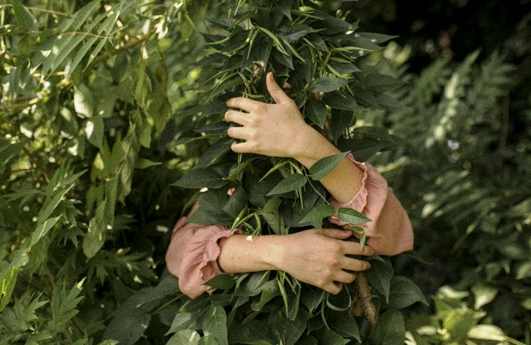 human hands wrapped around leaves (c) Will Cornfield