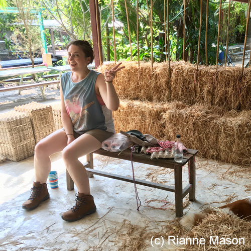 Making straw bale wall (c) Rianne Mason