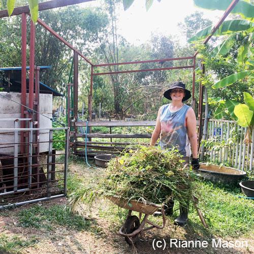 Daruma eco village (c) Rianne Mason