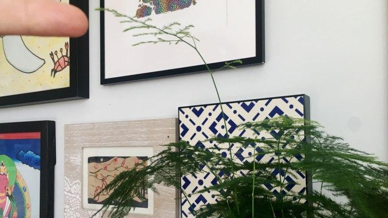 Asparagus fern (c) Rianne Mason