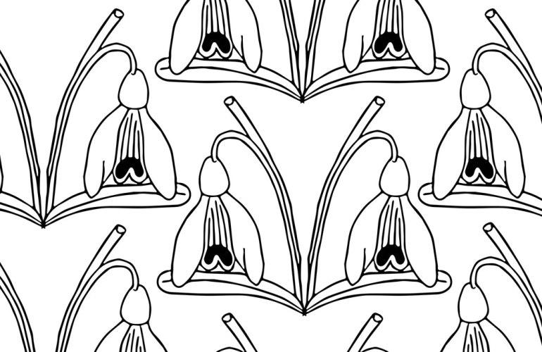 Snowdrop pattern (c) Rianne Mason