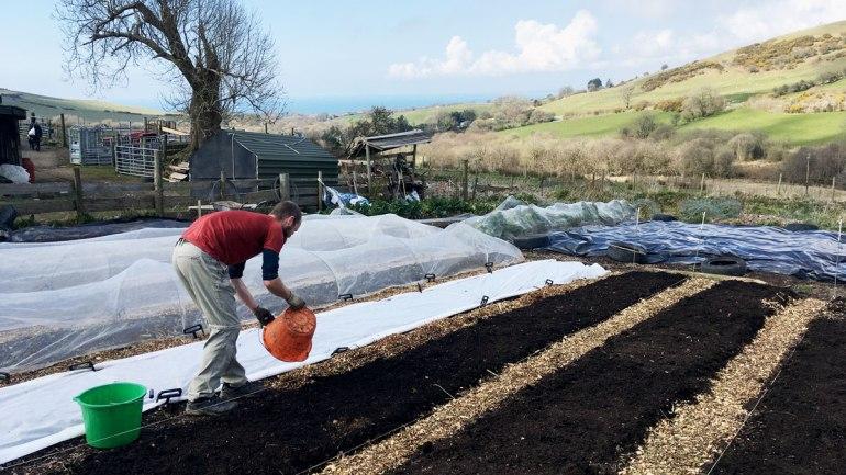 Market garden beds at Henbant permaculture farm (c) Rianne Mason